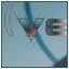 Contabilidad y Gestión del I.V.A.